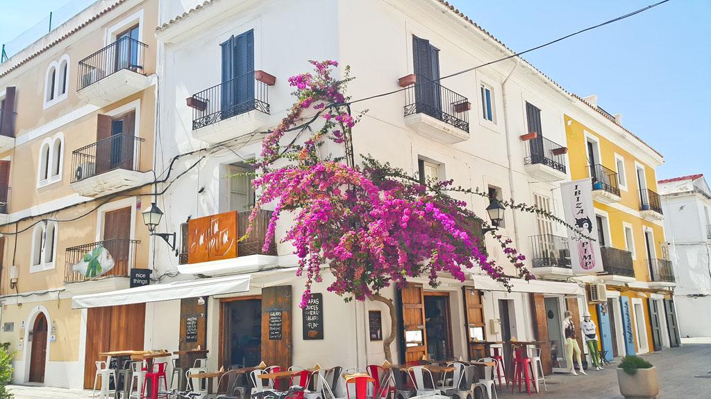 Ibiza103y