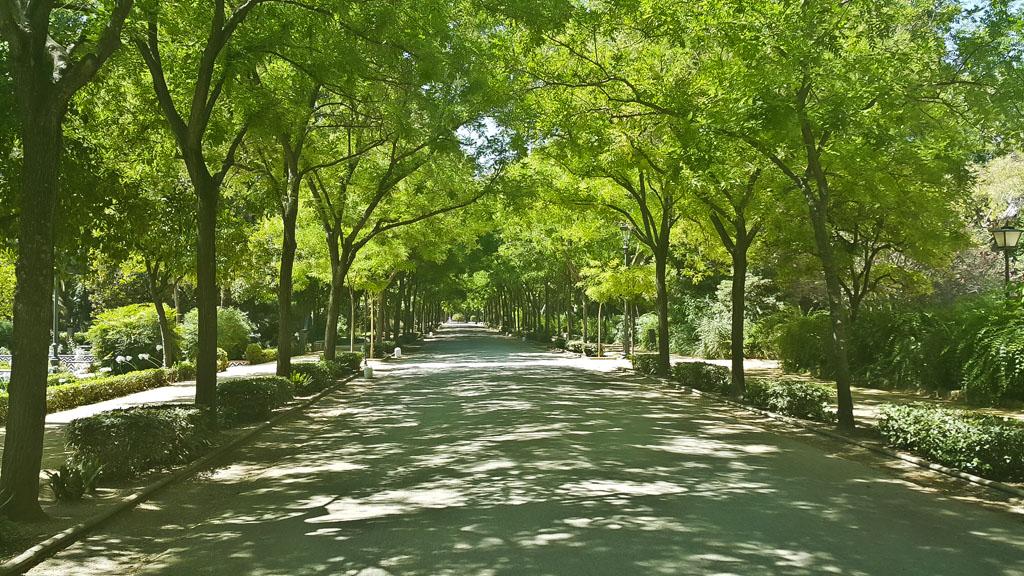 Seville-9583