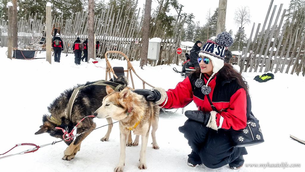 Husky Safari Rovaniemi16
